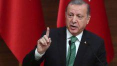 Cumhurbaşkanı Erdoğan'dan OYUNCU DENİZ ÇAKIR'A TEPKİ