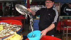 Lodos Balık Fiyatlarını Düşürdü