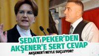 Sedat Peker'den Meral Akşener'e çok sert cevap