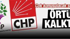 CHP-HDP ittifakı arasındaki örtü kalktı