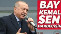 Bay Kemal sen darbecisin