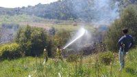 orman yangınında 6 dönüm alan zarar gördü