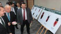 Balıkesir'in tarihi ismi Karesi fauna literatürüne geçti