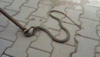 İtfaiyeden yılan operasyonu