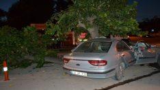 Balıkesir'de otomobil ağaca çarptı: 1 ölü