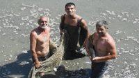 Balıklar doğal yaşam alanlarına taşınıyor
