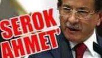 HDP eş başkanı ol, külfetten kurtul Serok Ahmet!