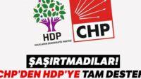 CHP'den HDP'ye tam destek