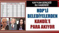 Rakamlar yalan söylemez! HDP'li belediyelerden Kandil'e para akıyor.