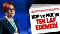 Akşener'den Diyarbakır annelerine sözde destek! HDP ve PKK'ya tek laf edemedi.