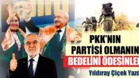PKK'nın Partisi olmanın bedelini ödesinler!