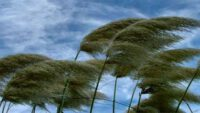 Ege'de 8bofor hava bekleniyor
