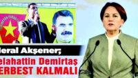 "Heval Abla'nın ""HDP"" dönüşü"