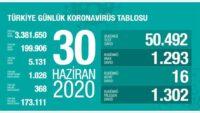 30 Haziran 2020 | Türkiye Günlük Koronavirüs Tablosu