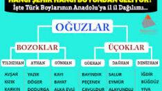 İşte Türklerin soyağacı! Hangi il bakın hangi boydan geliyor…