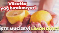 Vücutta yağ bırakmayan 5 günde 3 kilo verdiren inanılmaz limon diyeti