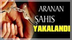 ARANAN ŞAHIS ALTINOLK'TA YAKALANDI