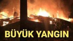 Sındırgı'da yangın: 5 ev kül oldu, 1 ölü var