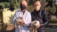 BAÜN'de Hayvansal Üretim Faaliyetlerine Yenileri Eklendi