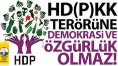HD(P)KK terörüne demokrasi ve özgürlük olmaz!
