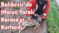 BALIKESİR'DE İTFAİYE YARALI KARACA'YI KURTARDI
