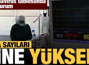 Vaka, Hasta, ölü sayısı ve son durum açıklandı