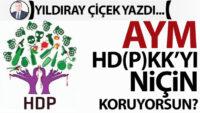 AYM, HD(P)KK'yı niçin koruyorsun?
