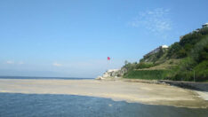 Bandırma,Erdek ve Marmara ilçelerinde Deniz Salyası