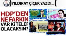 HDP'den ne farkın var ki telef olacaksın?