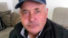 Balıkesir'de arı saldırısında 1 kişi öldü