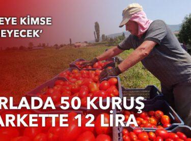 Tarlada 50 kuruş,markette 12 lira