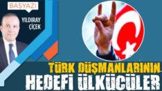 Türk düşmanlarının hedefi Ülkücüler
