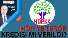 HDP'ye terör kredisi mi verildi?