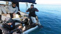 Burhaniye ve Gömeç ilçeleri dalış turizmine açılacak