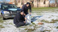 Kepsut Belediyesi sokak hayvanlarına mama dağıttı