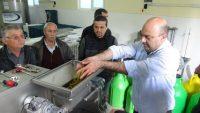 zeytin yağı üretim sisteminde ses dalgaları kullanılacak.