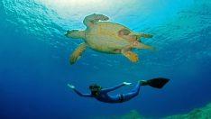 Dünya dalış dekortmeni Ercümen'den doğru nefes teknikleri