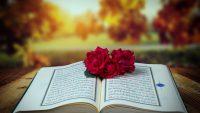 Kur'an, müminler için şifadır