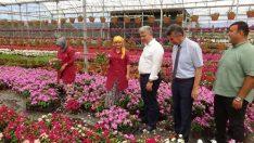 Kazdağları'nı çiçek açtıracak projeyi incelediler
