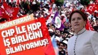 Meral Akşener HDP ve CHP'nin iş birliğini bilmiyormuş!.