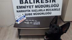 Narkotik köpeği 'Bath' uyuşturucu tacirlerine geçit vermiyor.