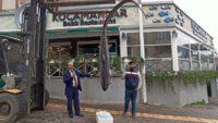 Bandırma'da Balıkçıların ağına 200 kiloluk köpek balığı takıldı