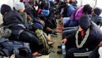 Afganistan Uyruklu 48 Düzensiz Göçmen Yakalandı.