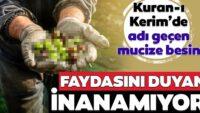 Kuran-ı Kerim'de adı geçiyor faydaları saymakla bitmiyor!..