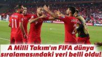 A Milli Takım'ın FIFA dünya sıralamasındaki sıralaması belli oldu!