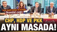 LANET OLSUN SİZE..CHP, HDP ve PKK Berlin'de buluştu (Sıtkı ŞEREMETLİ)