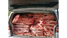 Jandarma, Sağlıksız Olarak Taşınan 900 kg Sakatat Yakaladı.