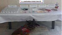 Edremit ve Burhaniyede uyuşturucu tacirleri yakalandı