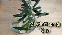 Koronayla savaş için zeytin yaprağı çayını demliyorlar:Covid-19 için umut oldu
