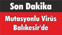 MUTASYONLU VİRÜS BALIKESİR'DE